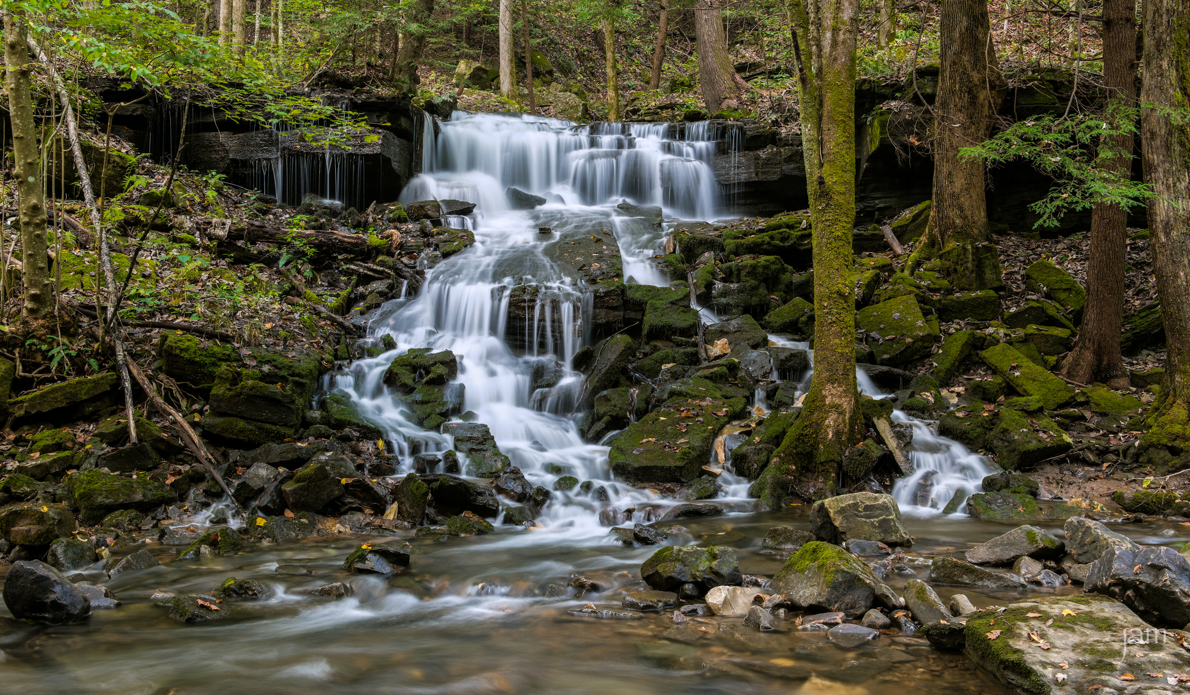 Visit the South Cumberland Plateau